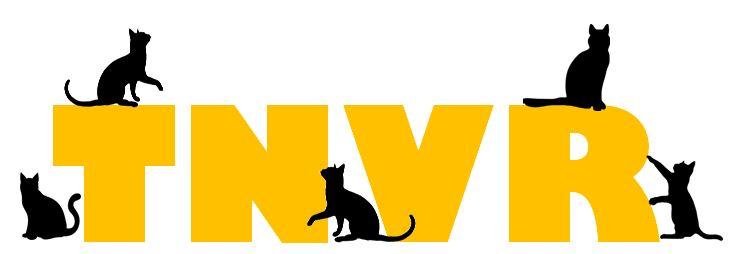 Image result for tnvr