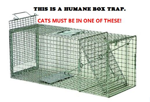 This is a humane box trap. Cats must come in one of these!